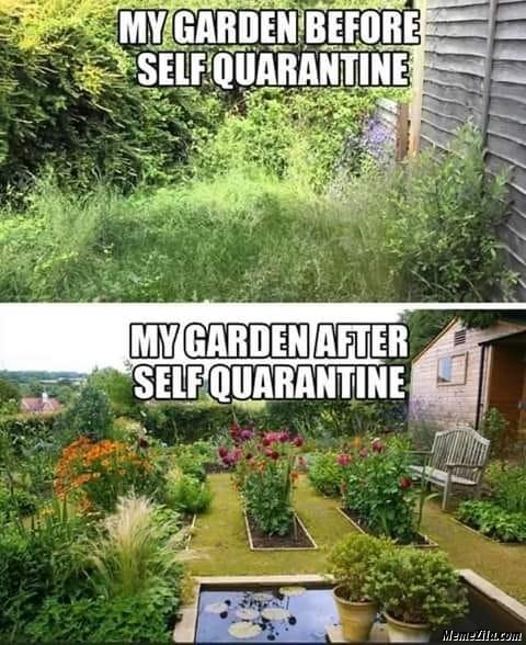 Garden meme